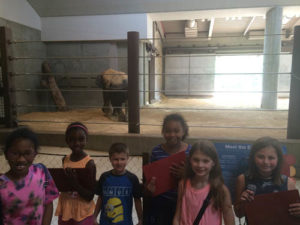 Campers working on their scavenger hunt... baby elephant, check!